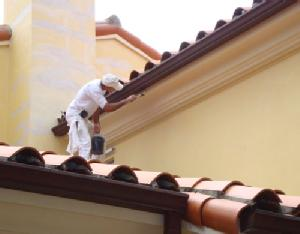painting contractor Palm Beach before and after photo 1530131840105_painting_roof_ss